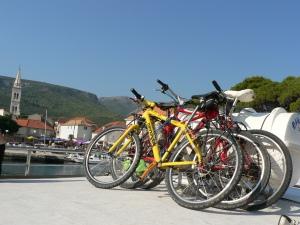eroii bicicliadei